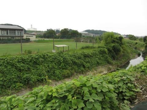 逆川と栄川中学校