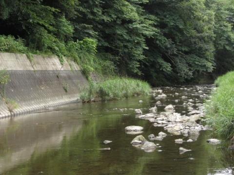 塩井神社付近の逆川