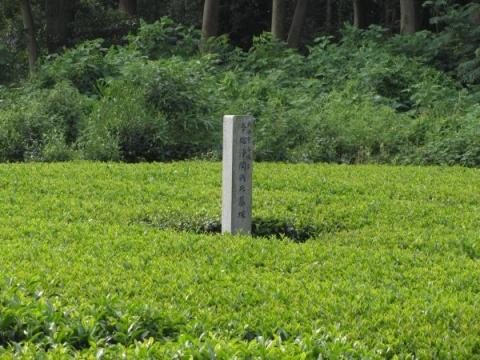今福浄閑戦死墓塚
