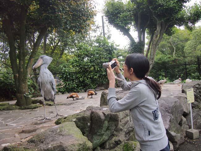 伊豆シャボテン動物公園4