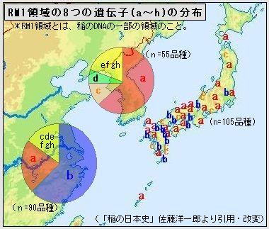 RM1_no_8idennshi_no_bunnpu.jpg