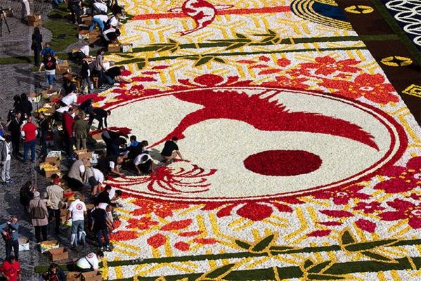 belgium-flower-carpet-2016-designboom-013.jpg