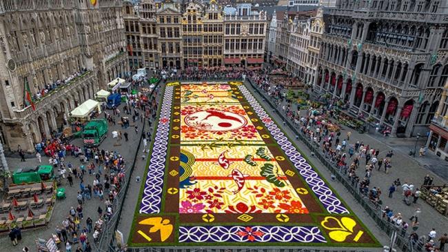 belgium-flower-carpet-2016-designboom-02.jpg