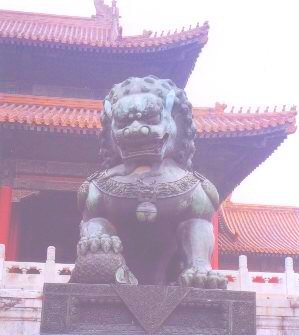 lion06.jpg