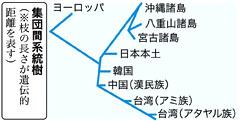 okinawaimg5418e15c969a0.jpg