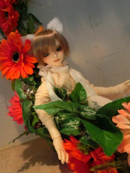 asuka_1.jpg
