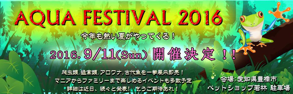 aqua_festival2016_990a.jpg