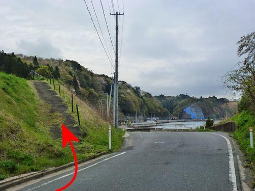 hachigasaki_m4.jpg