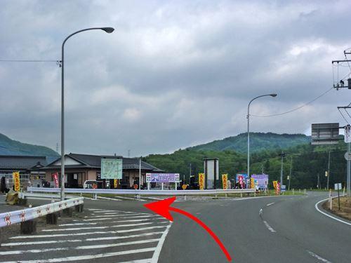koyamori1.jpg