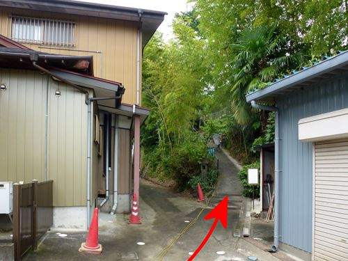 tsukinoki_m13.jpg