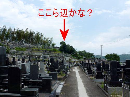 tsukinoki_m3.jpg