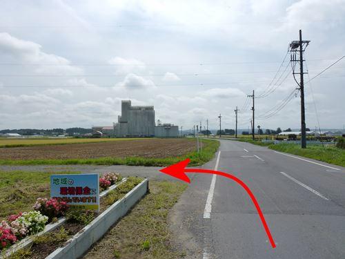 ushikai5.jpg