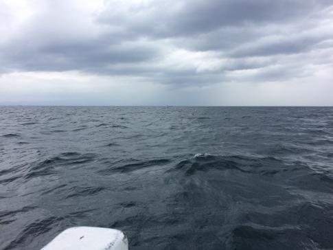 20161110釣り場