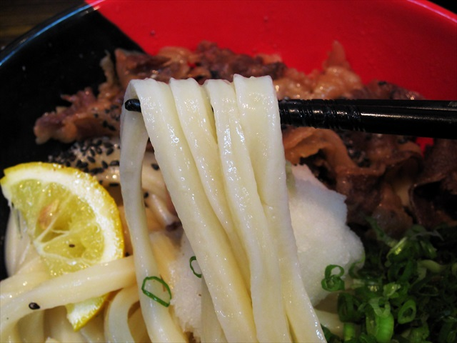 161002-極楽うどんAh-麺-0017-S