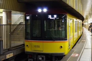 IMGP1389.jpg