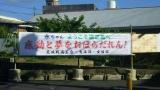 徳之島6-23-04