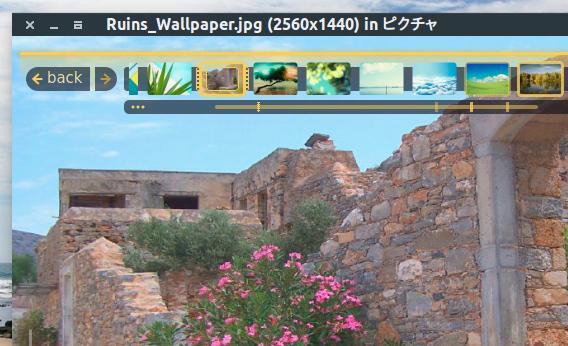 Fragment Image Viewer Ubuntu 画像ビューア HUD パネル