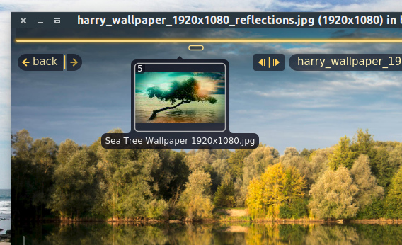Fragment Image Viewer Ubuntu 画像ビューア HUD スライダー