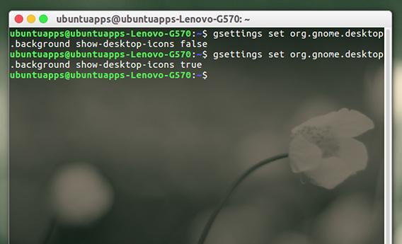 GSettings Ubuntu コマンド デスクトップアイコン すべて隠す