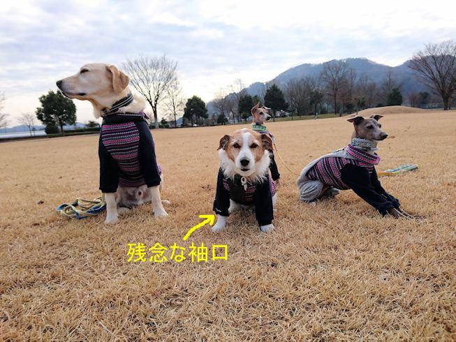 2016おでかけ646