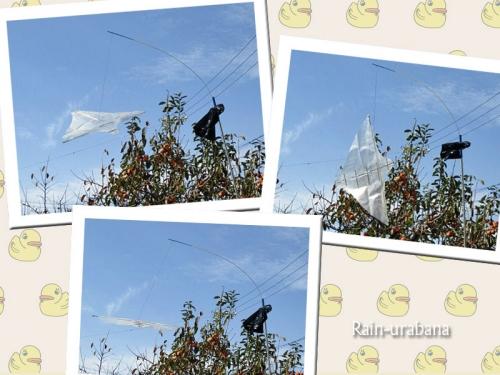 ソヨソヨの風で飛びまくる!