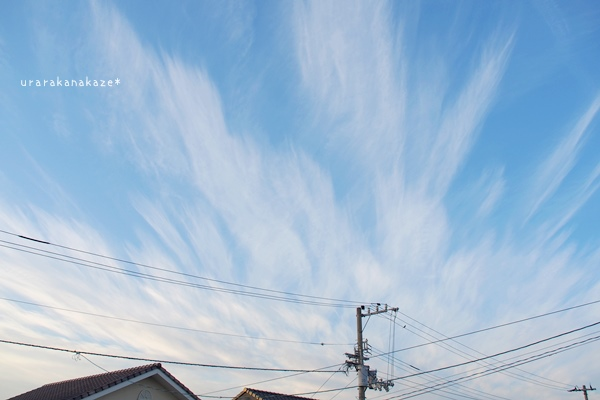 放射状巻雲
