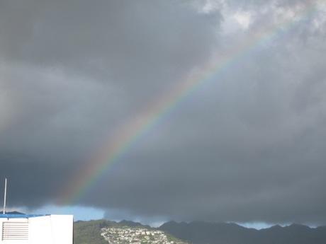 虹が出てる!