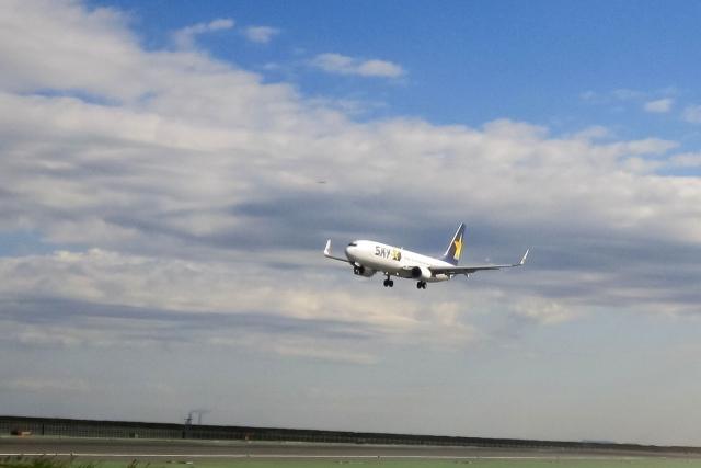 着陸の飛行機