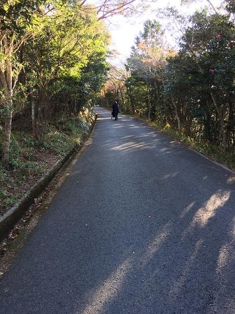 苦行横山展望台