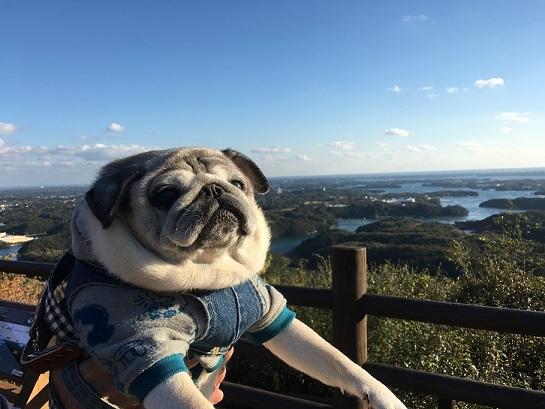 英虞湾の眺め