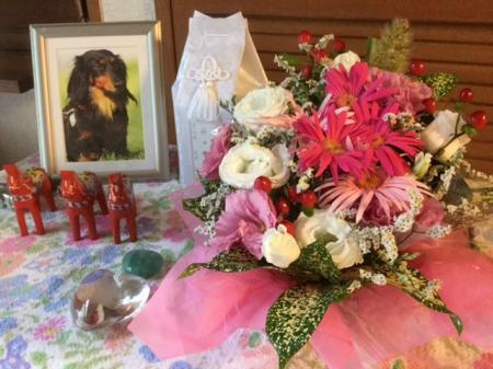 S20160904小倉先生からのお花