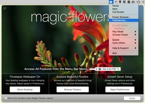 Magic_Flowers