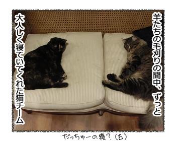 01112016_cat1.jpg