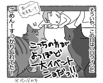 01112016_cat4.jpg