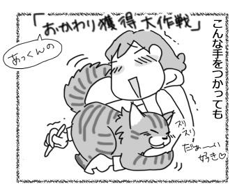 03122016_cat1.jpg