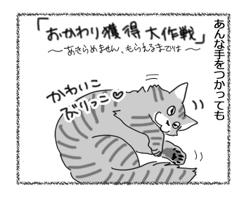 03122016_cat2.jpg