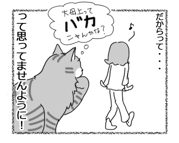 03122016_cat4.jpg