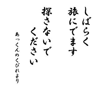 05112016_cat6.jpg