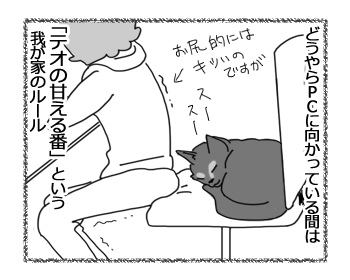 11122016_cat2mini.jpg