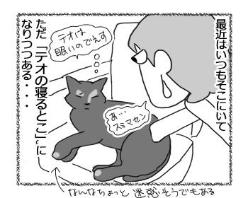 11122016_cat4mini.jpg