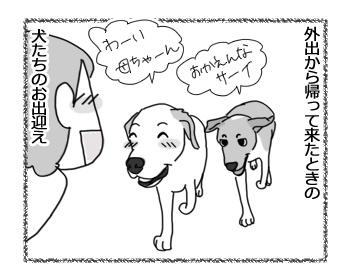 羊の国のビッグフット「猫と犬の違い~お出迎え編~」1
