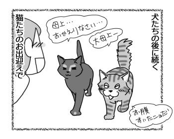 羊の国のビッグフット「猫と犬の違い~お出迎え編~」4