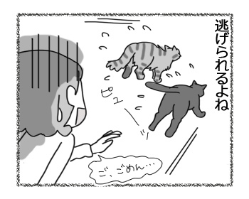 羊の国のビッグフット「猫と犬の違い~お出迎え編~」6