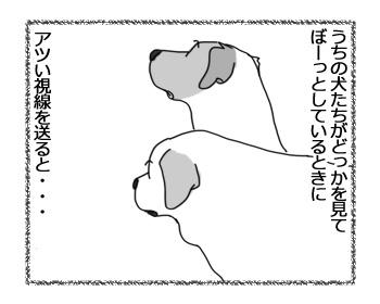 19122016_cat1.jpg