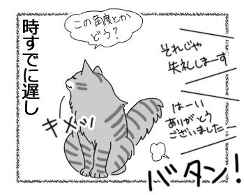 26112016_cat4mini.jpg