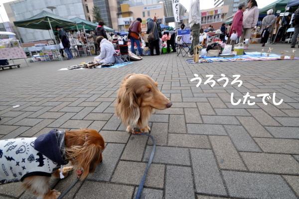 20161120104.jpg