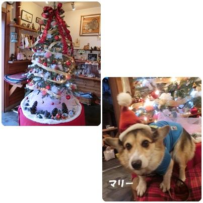 2016-12-31.jpg