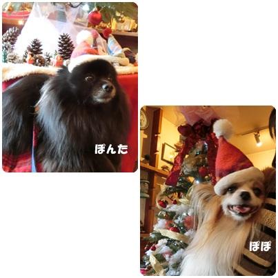 2016-12-57.jpg