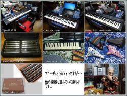 他の楽器20161123