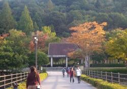 鏡山公園でアコーディオン20161030-1